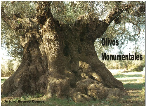 Book Cover: E008 Olivos Monumentales (Llibre + CD)